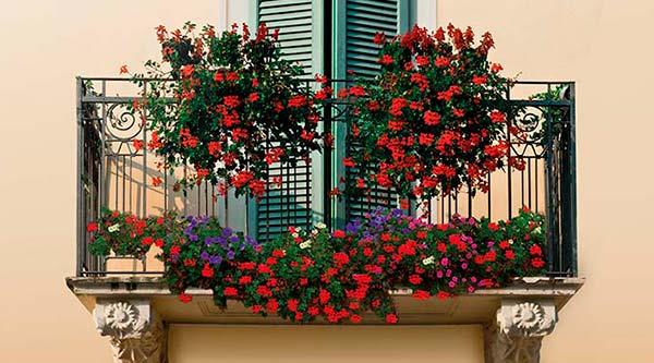 Concurso de balcones